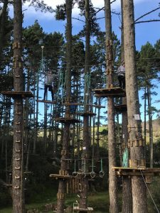 Trip to Adrenaline Forest